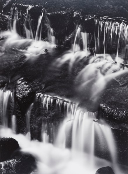 Fern Springs, Dusk by Ansel Adams