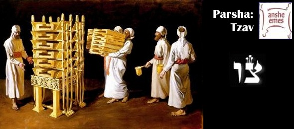 Image result for tzav torah portion images