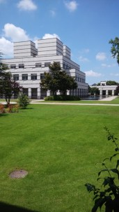 A view of the campus buildings