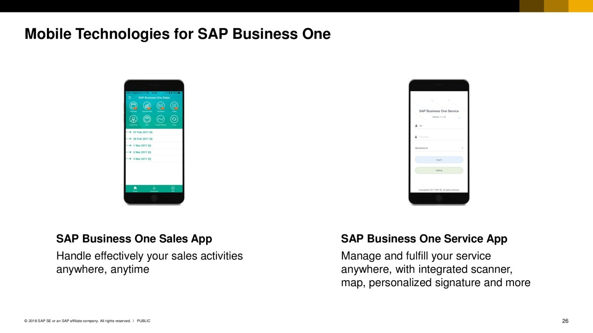 SAP Business One 25