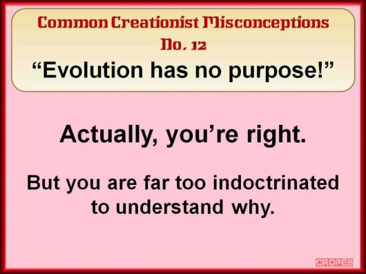 Creationist Misconceptions No. 12 - No Purpose