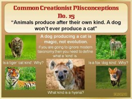 Creationist Misconceptions No. 15 - Own Kind