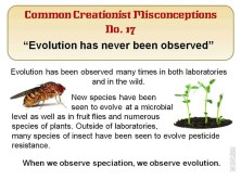 Creationist Misconceptions No. 17 - Observed