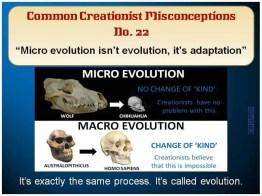 Creationist Misconceptions No. 22 - Macro Evolution