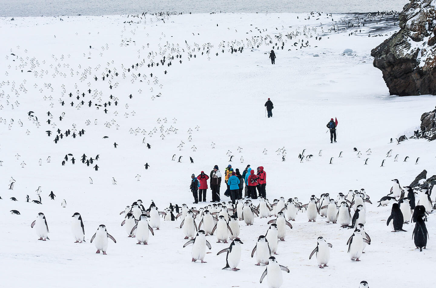 Expedition to Planet Earth with Antarctica21