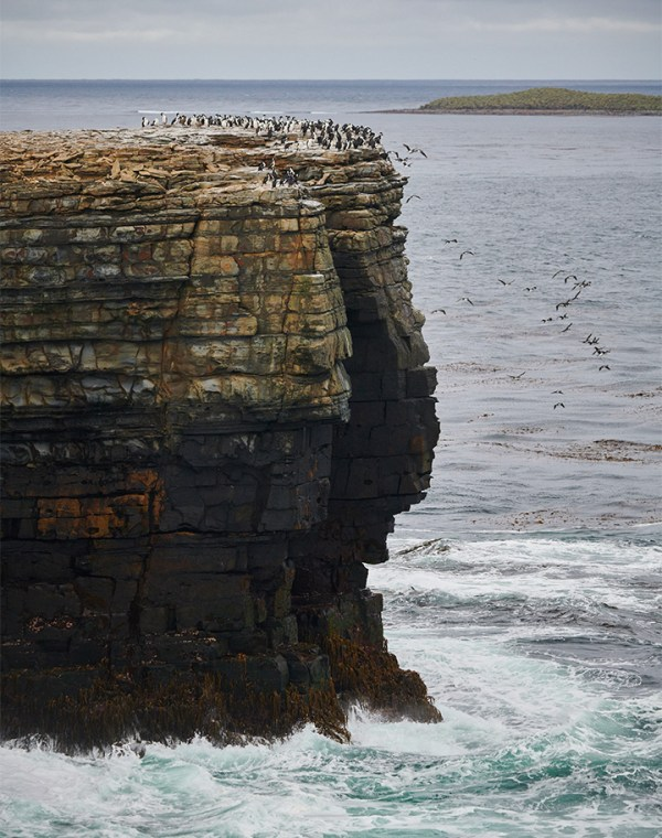 The Falklands (Malvinas) landscape. Photography by Rodrigo Moraga.