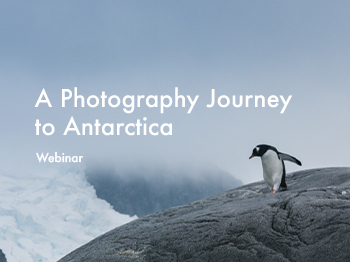 Antarctica Photography webinar with Michael Durr