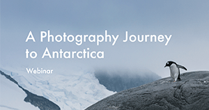 A photography journey to Antarctica webinar, with Michael Durr and Antarctica21
