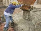 Olandezii vor sa interzica accesul muncitorilor romani inca trei ani