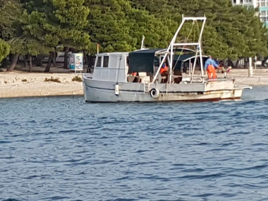 Ribari petrcane (6)