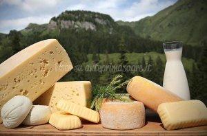 💬 Käse-Festival 2018 di Kötschach-Mauthen