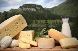 Käse-Festival 2018 di Kötschach-Mauthen