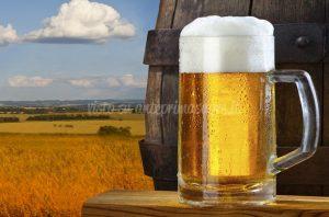 💬 Festival della Birra Artigianale 2018 a Fiume Veneto