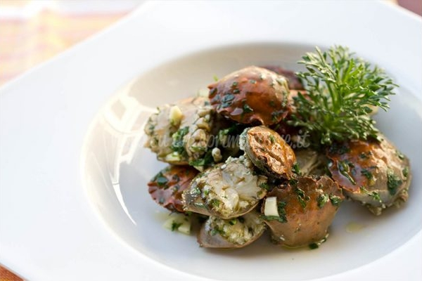 Masanette in insalata