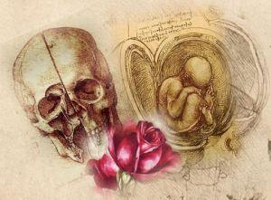 Tod_Leben