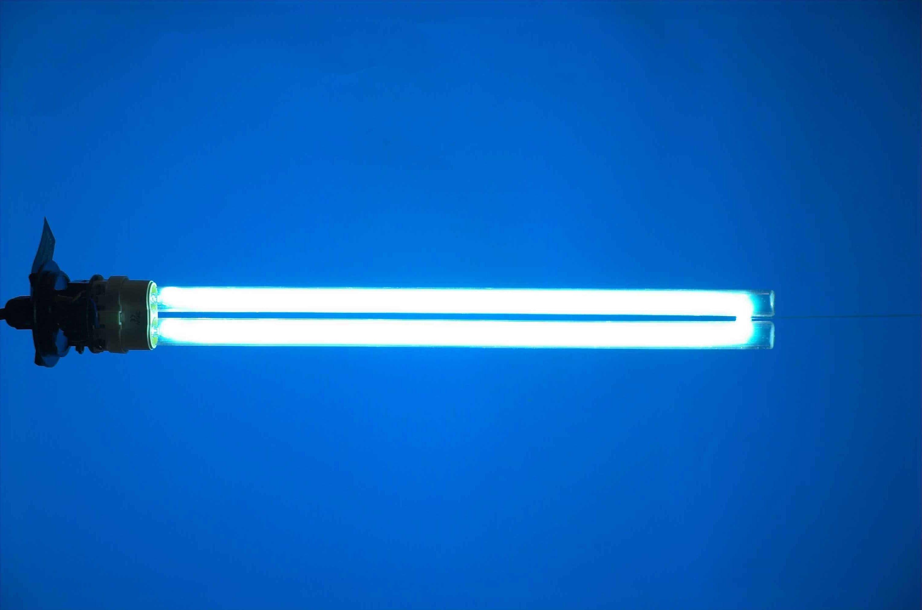 Comparatif Lampe Anti Moustique Tarifs Modeles Efficacite