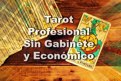 Tarot Profesional sin gabinete