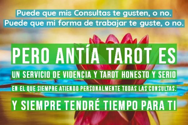 Antía Tarot Tarot Serio y Honesto