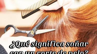 Photo of Soñar con corte de pelo ¿Qué significa?