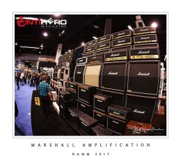 Marshall-Amps-DDL