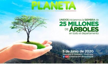 Antioquia sembrará 25 millones de árboles