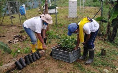 Fortalecimiento de granjas en Valdivia