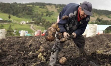 Los campesinos son una prioridad en Puerto Triunfo