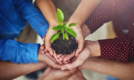 Rionegro le apuesta a la conciencia ambiental