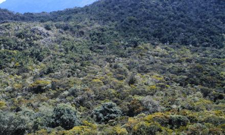 Campesinos de Cundinamarca generan alternativas para el acoplarse al cambio climático