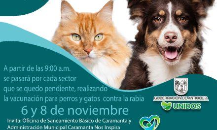 En Caramanta se realizará jornada canina y felina
