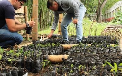 Caracolí fortalecerá el trabajo comunitario y ecológico