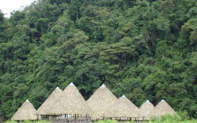 Rescatadas dos niñas indígenas en Mutatá