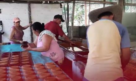 Recuperación del Trapiche Comunitario de la vereda San Julián, en Puerto Berrío