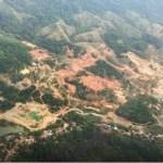 Próxima recuperación de 10.000 hectáreas en el Bajo Cauca