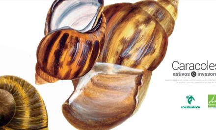 Cartillas sobre cuidado de caracoles y polinizadores