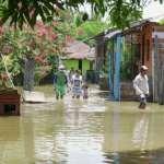 Crecida del río Cauca afecta a las familias del Bajo Cauca