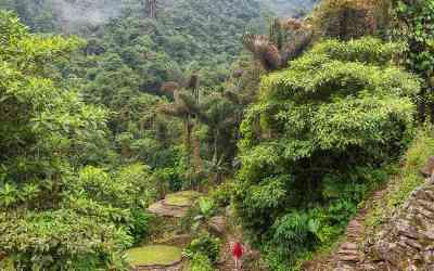 Será una realidad el Parque Natural y Arqueológico Cerro Tusa