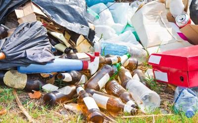 Aprovechamiento de residuos orgánicos en Heliconia