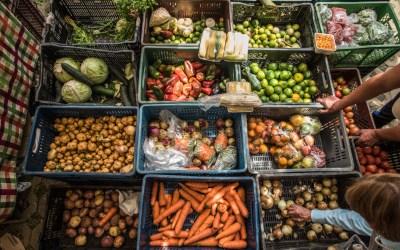 Vuelven los mercados campesinos a Sabanalarga