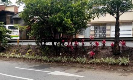Intervención paisajística en seis parques del Centro de Medellín