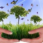 Aseo Global crea estrategias en la Semana Ambiental
