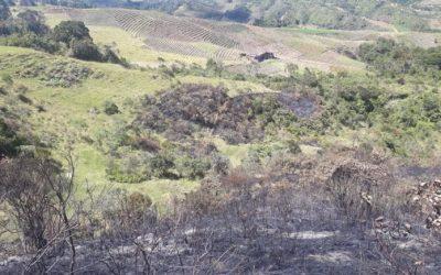 Según la Alcaldía de Sonsón no hubo afectación sobre el incendio en el Páramo