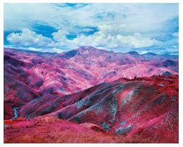 Richard Mosse's Remain in Light