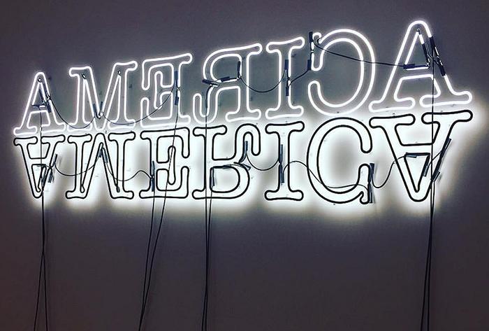 """""""Double America"""" by Glenn Ligon, 2012. Photo via Flickr"""
