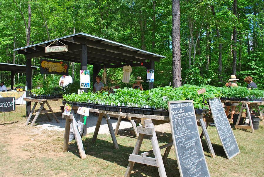 Serenbe Agrihood Organic Farm