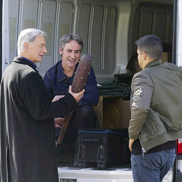 mike wolfe ncis