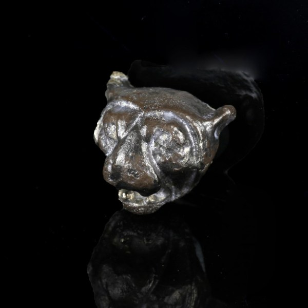 Silver Lion's Head Appliqué