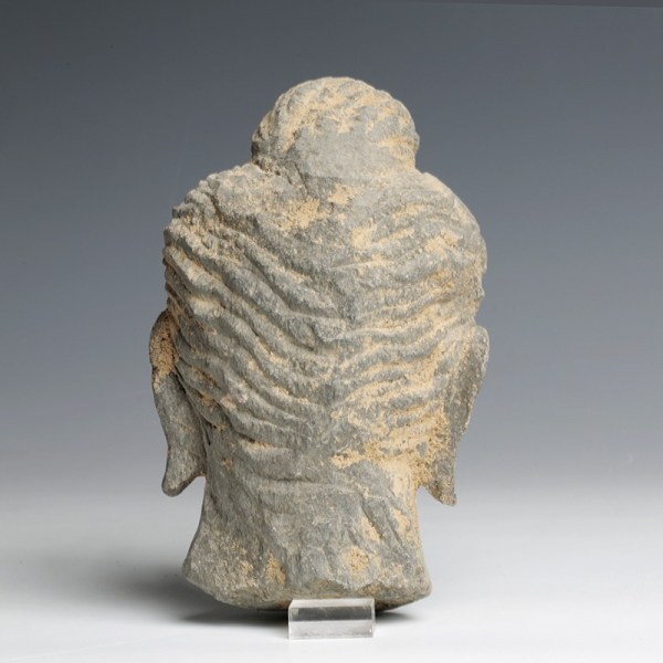 Gandhara Stone Schist Head of Buddha