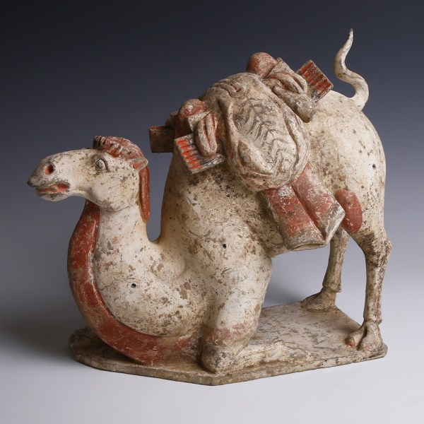 Tang Dynasty Terracotta Camel