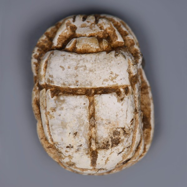 Egyptian Steatite Scarab with Royal Cartouches